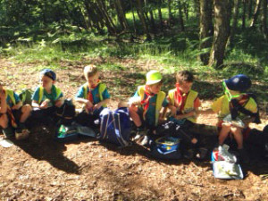 beavers-school-at-sandhill-wood